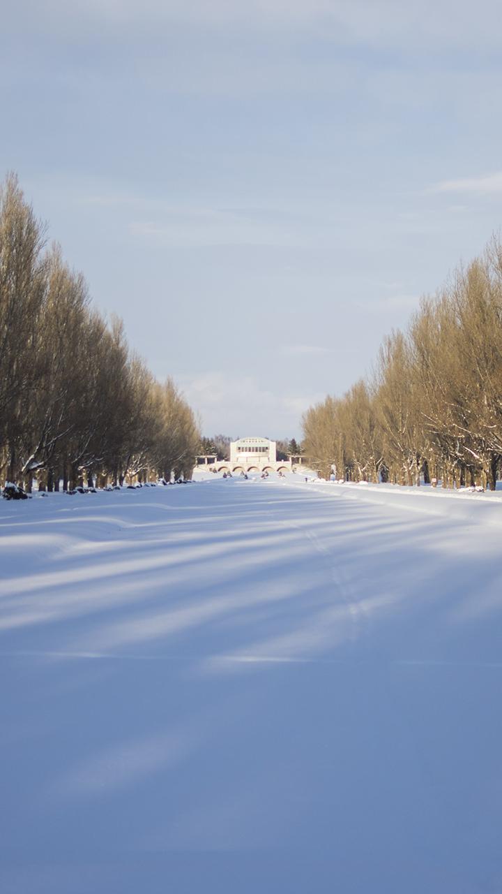 雪景色のiphoneスマホ無料壁紙 待ち受け 4040 フォトック